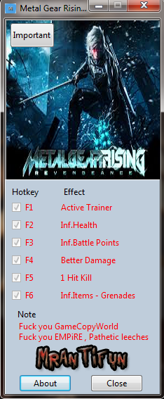 Metal Gear Rising:  Revengeance трейнер +5 (чит)